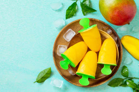 Healthy vegan orange mango citrus ice cream  . Summer dessert. Top view flat lay background. Copy space. Imagens