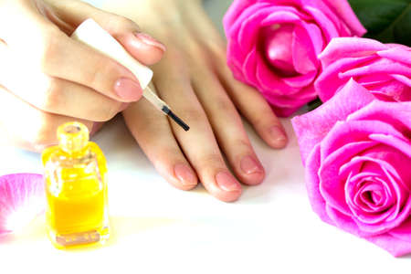 Beautiful manicured womans nails with pink polish and oil for cuticles isolated. Nails care. Manicure, pedicure beauty salon. Beautiful rose red blossoms.