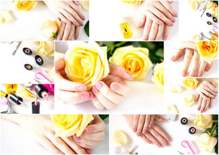 Collage Nails care. Beautiful manicured woman's nails with pink polish isolated.  Manicure, pedicure beauty salon.