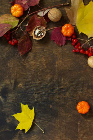 Autumn backgrounds. Thanksgiving or autumn harvest table setting. Top view of a flat lay. Free space for your text.