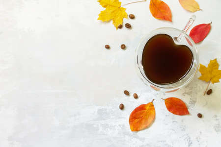 Autumnal concept with mup of Cup of hot coffee. Free space for your text.