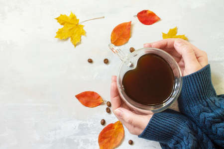 Autumnal concept. A woman is holding a cup of hot coffee. Flat lay top view. Free space for your text.