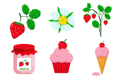 Set of strawberries, srtawberry flower and leaves, jam, cupcake and icecream. Flat vector illustration.