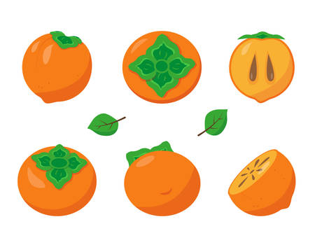 Persimmon with leaves on white background. Fresh whole and half of persimmon. Vector fruit icons illustration.