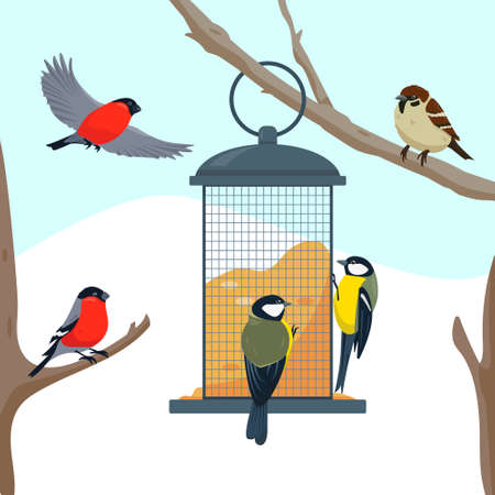 Bird feeder on the tree branch and different eating birds. Feeding birds in cold weather. Vector illustration. Vettoriali
