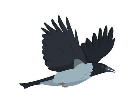 Flying Crow icon isolated on white background.