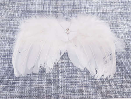white feather angel wings for newborn photo shoot