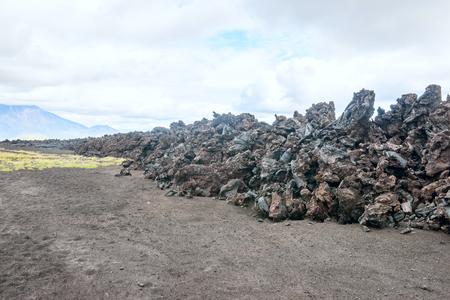 lava field: lava field on Kamchatka