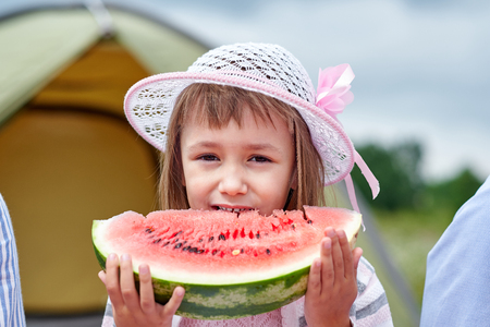 Portrait of little boy at picnic. Child eating watermelon in the meadow Reklamní fotografie - 125340151