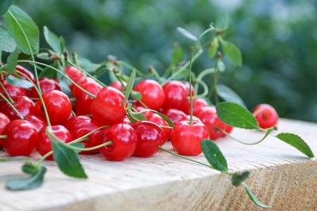 ripe: Ripe cherry Stock Photo