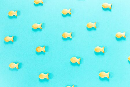 blue background with many small fish from cookies 免版税图像