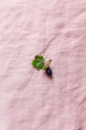 berry on a flaxen pink background, minimalism, free space for text