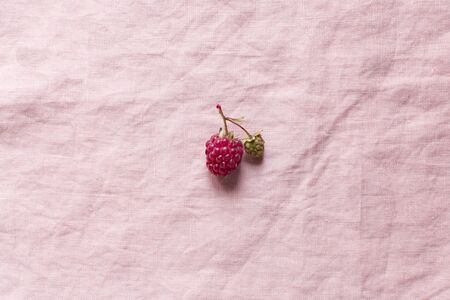Raspberry on a flaxen pink background, minimalism, free space for text