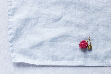 Raspberry on a flaxen blue background, minimalism, free space for text 스톡 콘텐츠