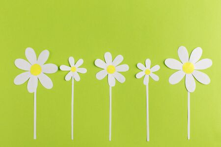paper daisy on a green background, handmade, nobody