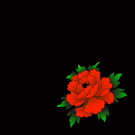 Red chinese rose on a black background