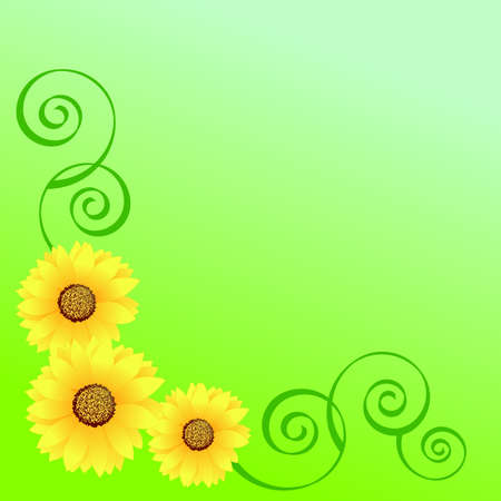 Three sunflowers and swirls on a green background Illustration