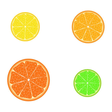 Different citrus slices (isolated elements for design)