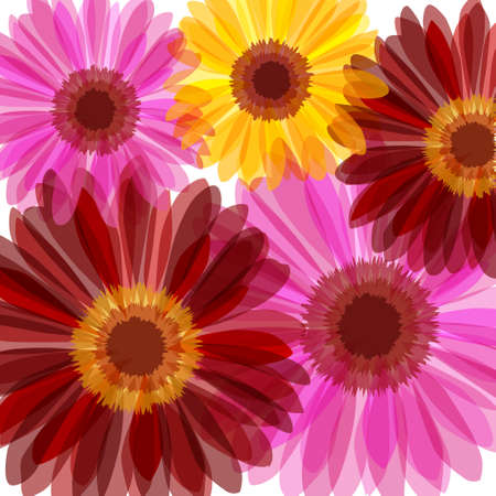 Bright daisy flowers background Vector