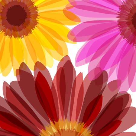 Bright daisy flower macro background Illustration