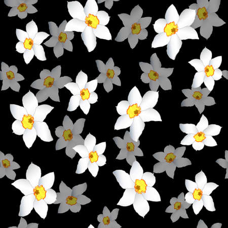 White narcissuses on black background (seamless) Vector