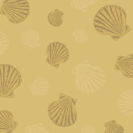 Background with shells on the sand