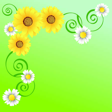 Bright spring background with sunflowers and camomiles