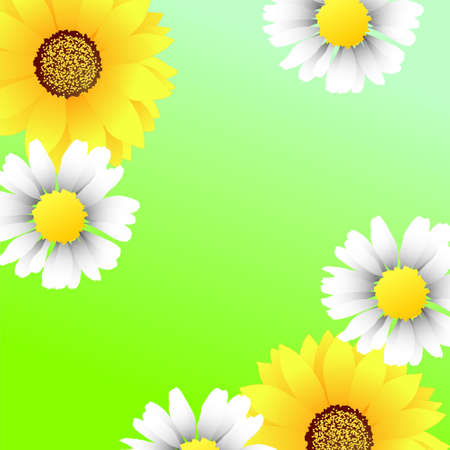 Bright green background wirh sunflowers and camomiles Illustration