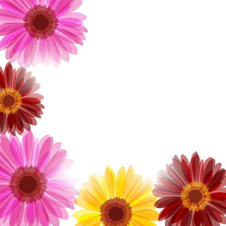 Background wth bright daisy flowers in sunlight