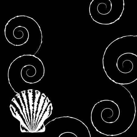Monochrome background with shell and spirals in sketch style Vector