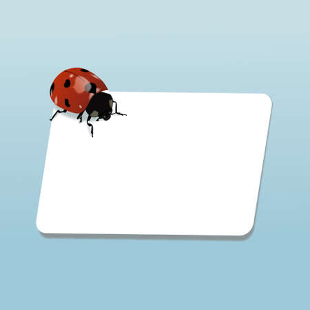 Realistic ladybug on piece of paper