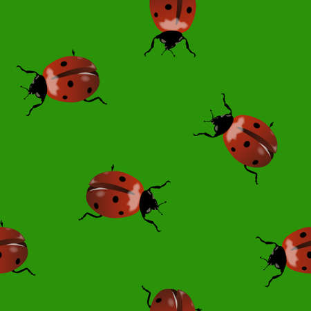 Seamless with realistic ladybugs on green background Illustration