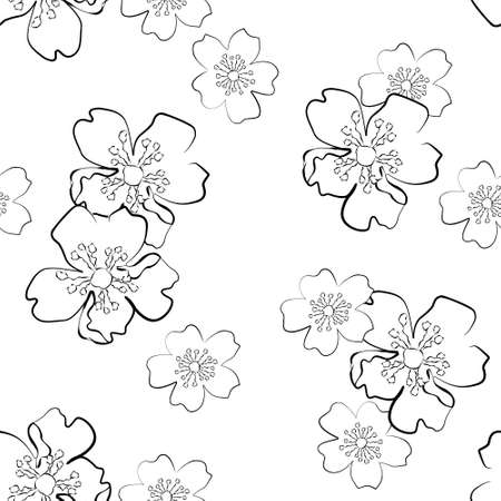 inflorescência: Seamless background with isolated sakura flowers in sketch style