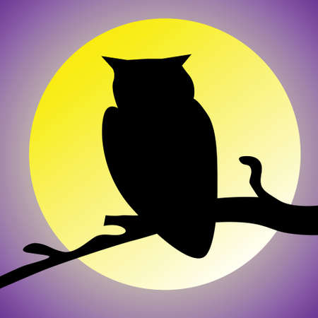 animal silhouette: Sillouette of night owl and moon