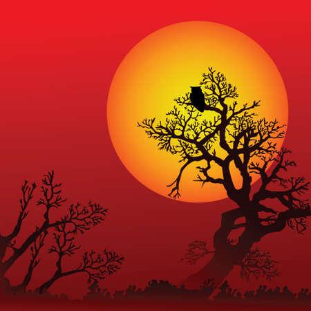 Fondo de Halloween con los árboles, el búho y la luna