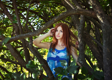 framed: Portrait of beautiful young woman in blue dress standing in a forest framed by tree branches