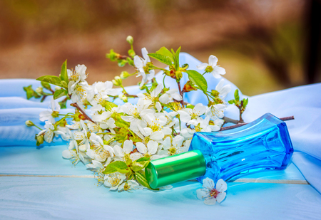 perfumery concept: Blue glass perfume bottle and blooming cherry branch with white flowers. Floral aroma concept.