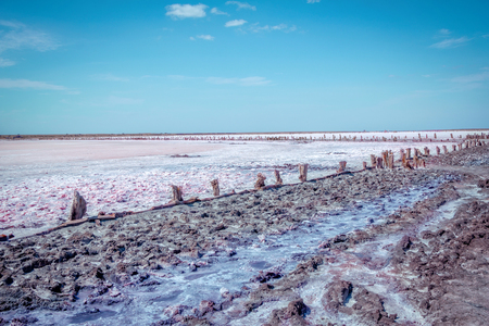 Dry in summer pink salty lake with path, hedged by weathered old wooden sticks, and footprints. Mud, salt and brine puddles, used in spa procedures and therapy. Stock Photo