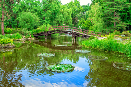 View of a beautiful garden with a wooden walking bridge, green trees, bushes and blue sky, reflecting in a pond water. Summer natural landscape