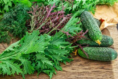 Salad ingredients - fresh cucumbers, arugula, dill, green onion and red mizuna (Japanese mustard) on the table Zdjęcie Seryjne