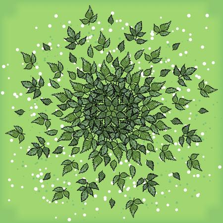 palm wreath: Symmetrical geometric circular pattern composition of plants.