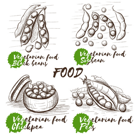 Vector sketch set with monochrome peas on white background. Healthy vegetarian food. Vintage collection for decoration design. Black beans, soybean, chickpea and peas. Illustration