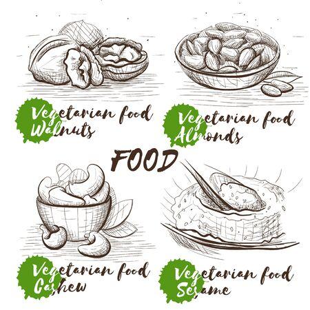Hand drawn set with nuts. Vegetarian healthy nutrition. Vintage food vector sketch set for restaurant menu. Raw veggie food.