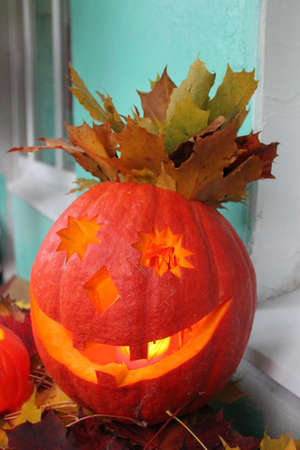 amusment: halloween  orange ripe pumpkin burning smile with foliage hair
