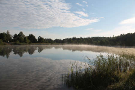 reflaction: early summer morning on the forest calm lake with milky mist on the water