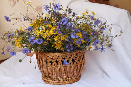 bouquet of wild field aroma summer flowers into the brown light willow basket photo