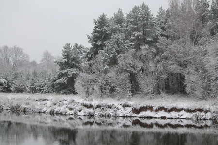 fluffy tuft: bank of the river covering shine pure snow