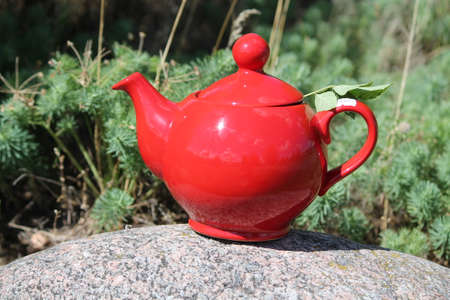 red clay teapot stay on top of stone in spring grass balance nad harmony things in nature Stock Photo