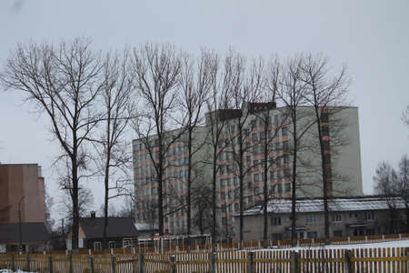 gray bulding cubical shape hide in bare trees in winter cold day Banco de Imagens