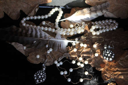 pearl accessories on autumn leaves